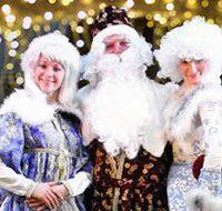 Программа для детей Новогоднее Шоу Звёзд